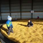 corn pit henry