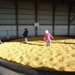 evanglene corn pit